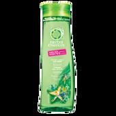 Bild: Herbal essences Strahlend Sauber Shampoo