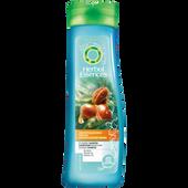 Bild: Herbal essences Orientalischer Traum Shampoo