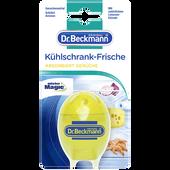 Bild: Dr. Beckmann Kühlschrank Frische