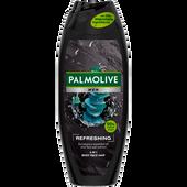 Bild: Palmolive Men 2in1 Refreshing Duschgel & Shampoo