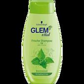 Bild: Schwarzkopf GLEM vital Frische Shampoo Brennnessel