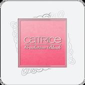 Bild: Catrice ProvoCATRICE Gradation Blush