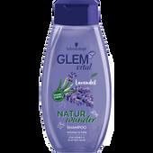 Bild: Schwarzkopf GLEM vital Naturwunder Shampoo Lavendel