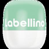 Bild: labello Labellino Coconut Water & Aloe Vera