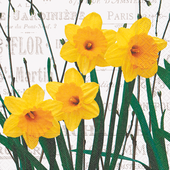 Bild: Paper + Design Servietten Yellow Daffodils