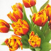 Bild: Paper + Design Servietten Tulips for you