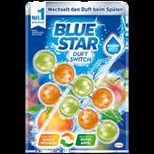 Bild: Blue Star Beckensteine Duft Switch