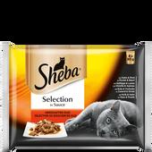 Bild: Sheba Selection in Sauce Herzhaftes Duo