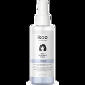 Bild: ikoo Duo Spray - Volumizing