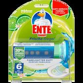 Bild: WC-Ente 5in1 Frische-Siegel Limone