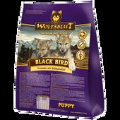 Bild: Wolfsblut Black Bird Puppy