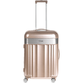 Bild: TITAN Spotlight Flash 4 Rad Trolley Gold Metallic 67 cm