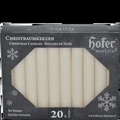 Bild: Hofer Christbaumkerzen champagner
