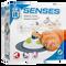 Bild: catit Design Senses Massage Center