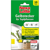Bild: Nexa Lotte Nexa Lotte Gelbstecker