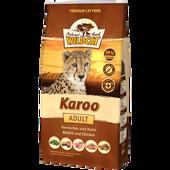 Bild: Wildcat Karoo Kaninchen