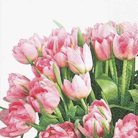 Paper + Design Servietten Tulip Time