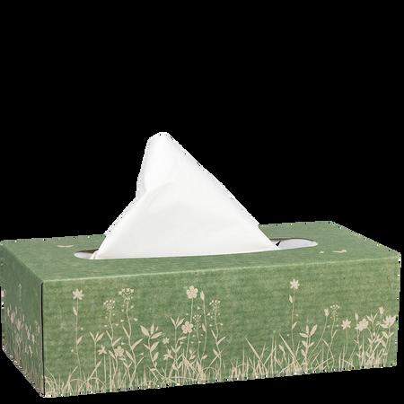 bi good Umweltfreundliche Taschentücher Box