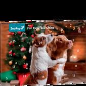 Bild: ZooRoyal Adventkalender