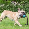 Bild: BeCo Pets Hundeball BeCo Ball mit Seil blau
