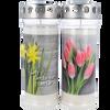Bild: Hofer Premium 7 Tage Motivlicht Narzisse & Tulpen