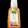 Bild: RAUSCH Malven Volumen Shampoo