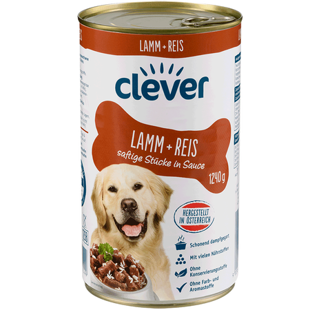 clever Lamm & Reis