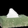 Bild: bi good Umweltfreundliche Taschentücher Box