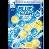 Bild: Blue Star Duft Switch Hygiene-Steine Ocean Fresh / Lemon