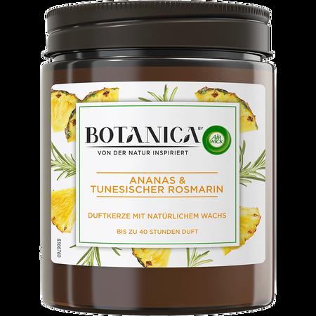 AIRWICK Airiwick Botanica Duftkerze Ananas & Tunesischer Rosmarin