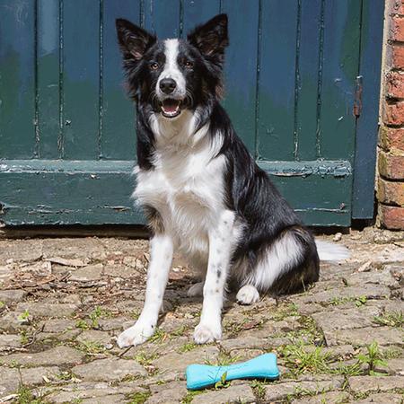 BeCo Pets Hundespielzeug BeCo Bone