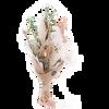Bild: We Are Flowergirls Dried Flower Bouquet Pistachio