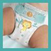 Bild: Pampers Baby-Dry Größe 4, 72 Windeln