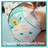 Bild: Pampers Baby-Dry Windeln, Gr. 6, 13-18kg,   Monatsbox ( 1 x 124 Windeln)