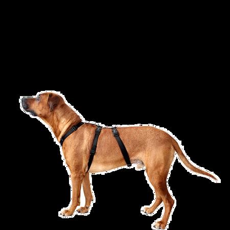 WOLTERS Cat & Dog Professional Geschirr Schwarz M