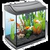 Bild: Tetra AquaArt Aquarium Komplettset Anthrazit 30L