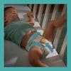 Bild: Pampers Baby-Dry Größe 5, 62 Windeln