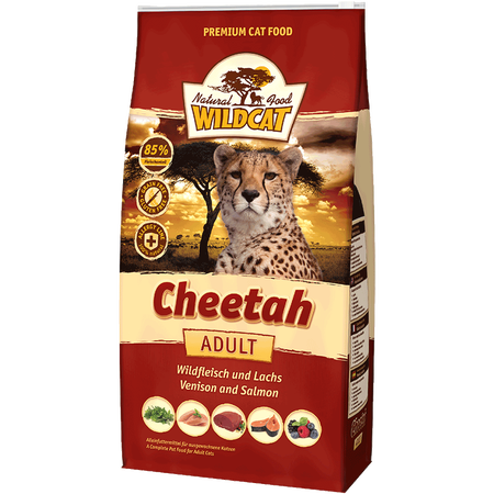 Wildcat Cheetah Wild