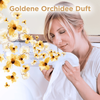 Bild: Lenor All-in-1 PODS Goldene Orchidee   Colorwaschmittel 18Waschladungen