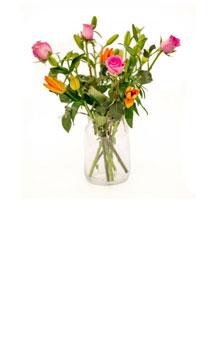 Philippa Blumenstrauß