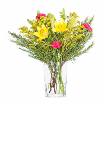 Rosemarie Blumenstrauß