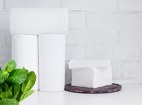 Toilettenpapier & Küchenrolle online bestellen