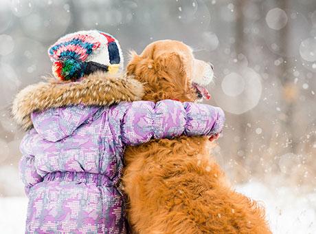 Auf vier Pfoten durch den Schnee