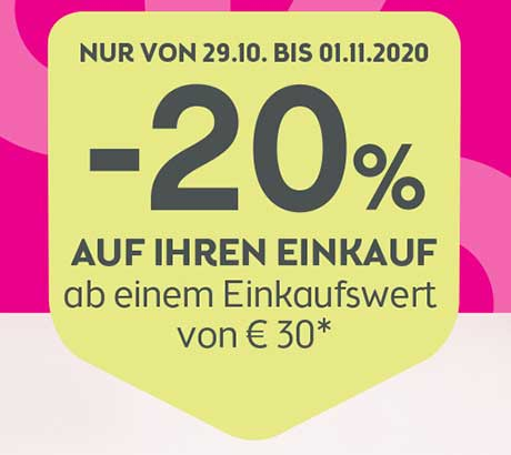 20% Aktion auf den gesamten Einkauf