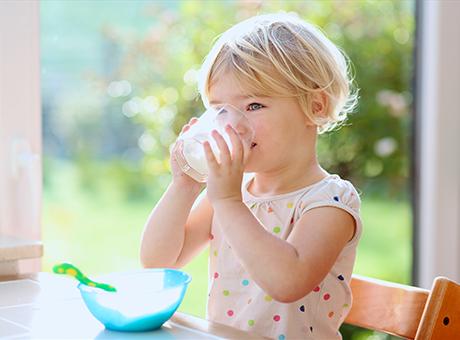 BEBA Kindermilch